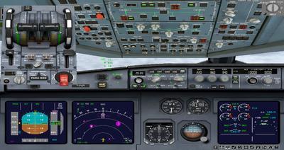 """""""Airbus A350 1000 XWB CamSim"""" FSX P3D  4"""