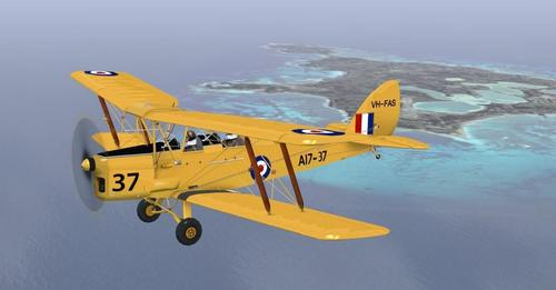 Ants De Havilland Tiger Moth DH-82A v1.1 FSX