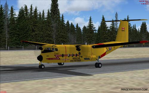Ντε Χάιλνλαντ DHC5 Buffalo Forces Canadiennes FSX