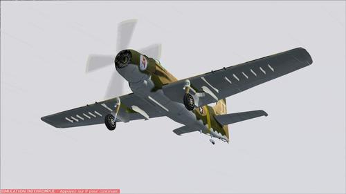 Douglas A1 SkyRaiderleer FS2004
