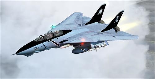 Grumman F-14B Erkek kediler FS2004