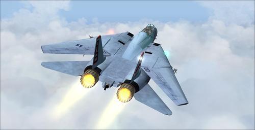 Grumman F-14B Tomcat FS2004