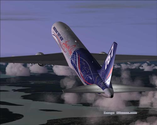 Boeing 767-400 World Tour FS2004