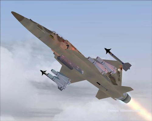 Northrop F-20 Tigershark FS2004