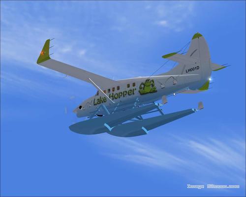 डे Havilland DHC-3 पाणमांजर एन जी FS2004
