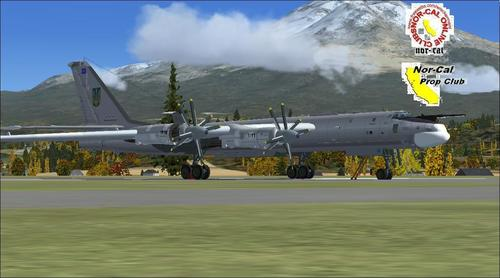 "Tupolev TU-95MS ""Bear"" FS2004"