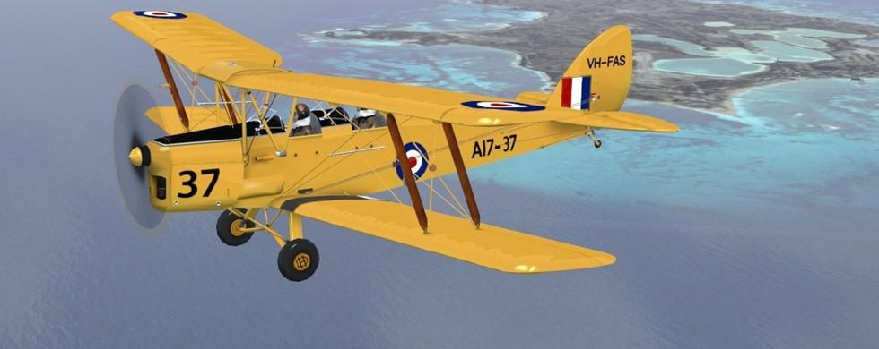 intro Ants De Havilland Tiger Moth Version 1.1 FSX